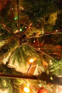Christmas 41
